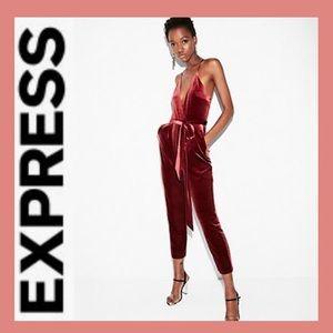 BNWT EXPRESS Velvet Jumpsuit